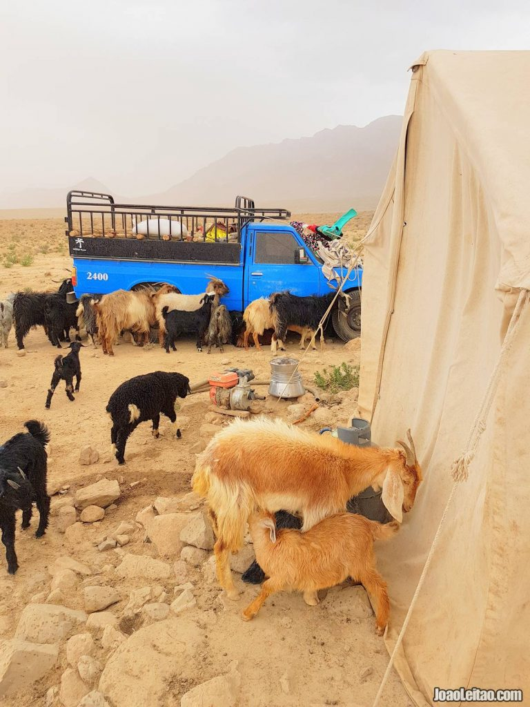 Nomads in Fars Province
