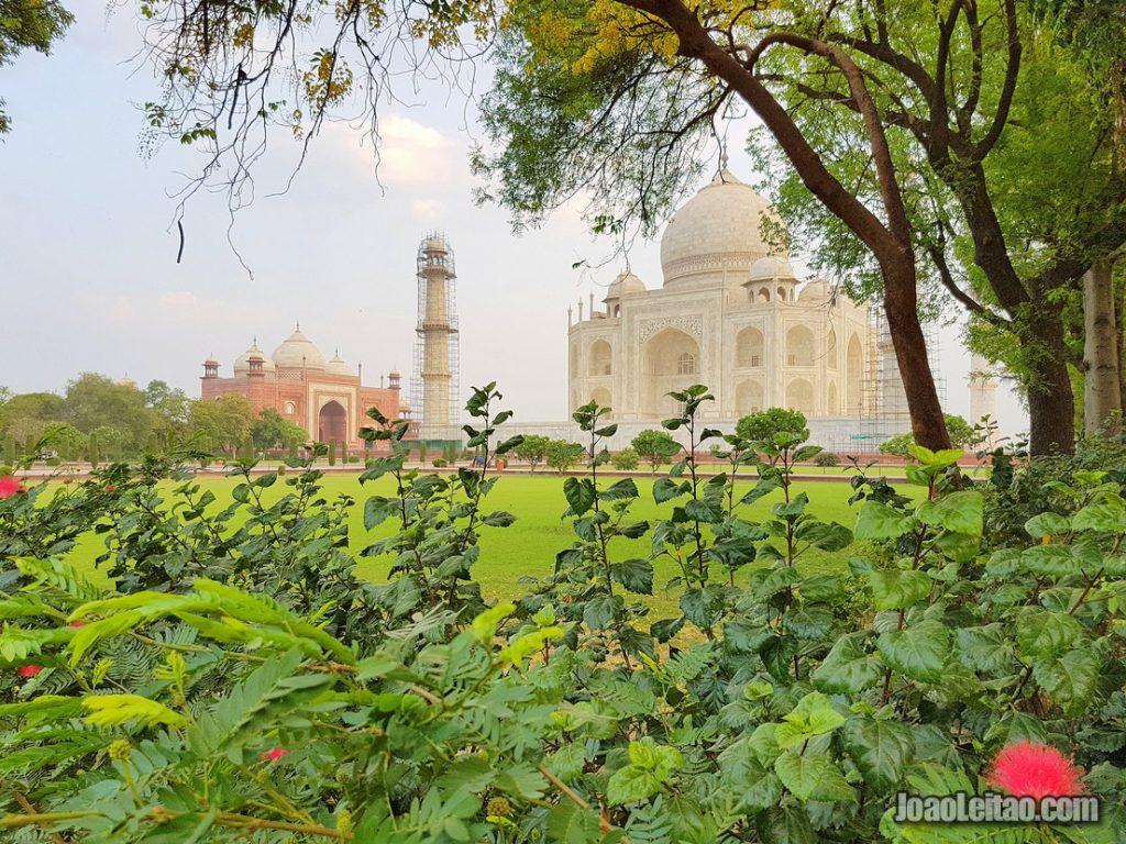 Gardens of the Taj Mahal