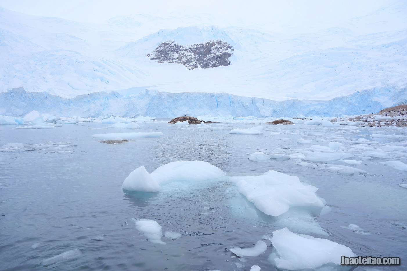 Listening to the Silence of Antarctica
