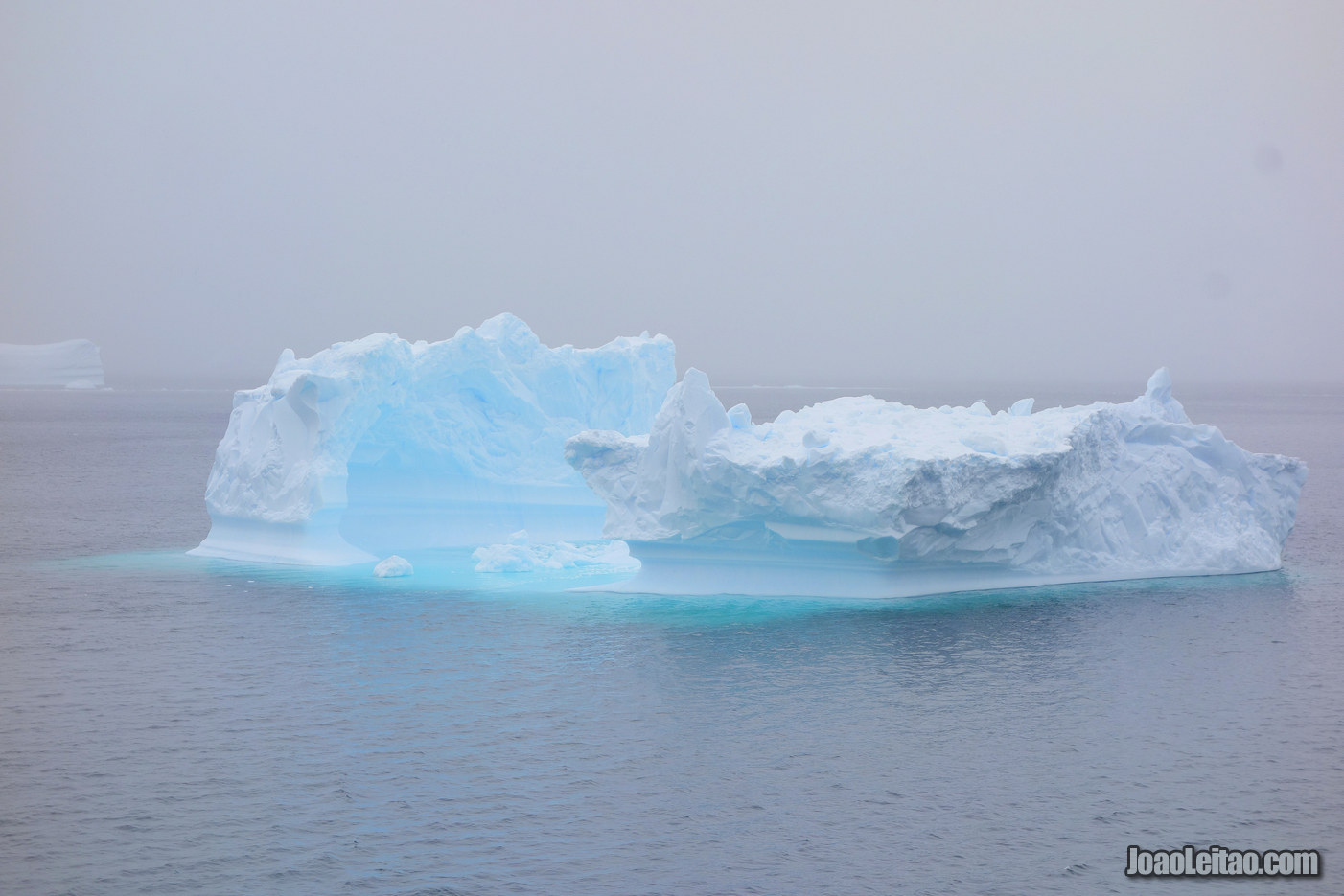 Visit Wilhelmina Bay in Antarctica