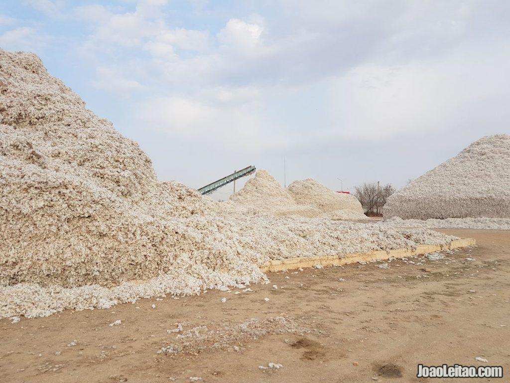 Cotton Factory Kazakhstan