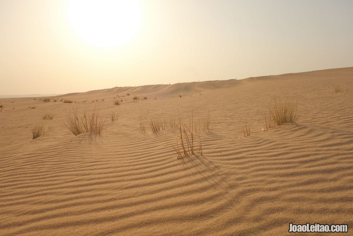 The Desert in Kuwait