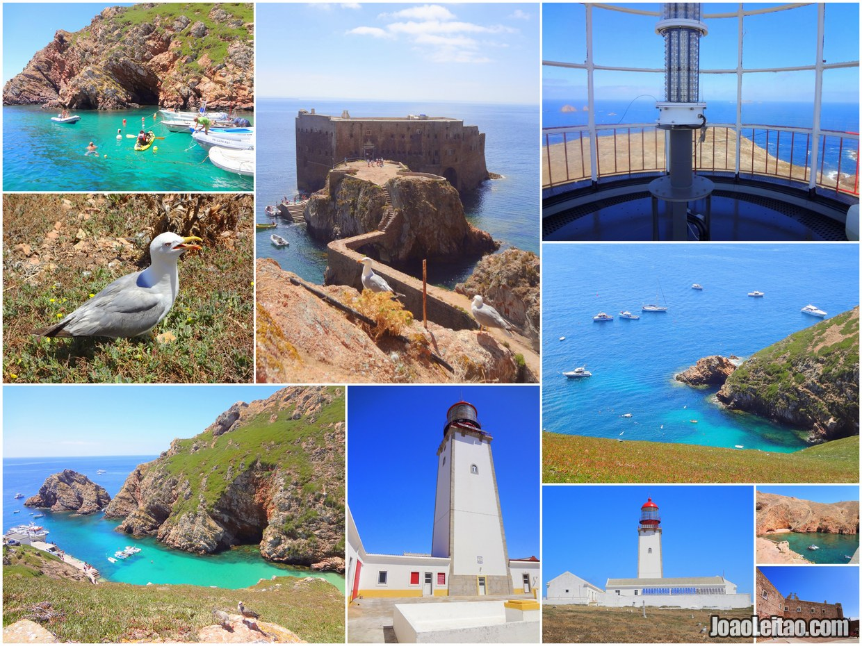 Best places to visit in Berlengas